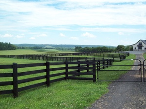 Agricultural Fence